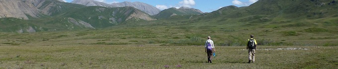 Hiking in the Arctic Refuge